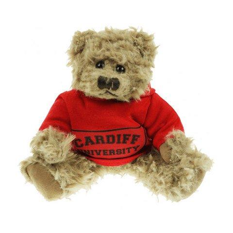 Windsor 20cm Hoody Bears