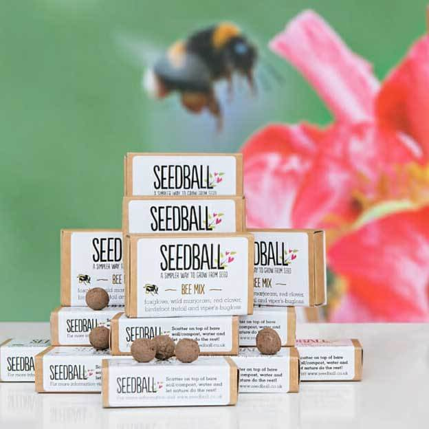 Seedball Matchboxes