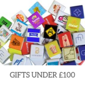 Christmas Gifts Under 100 Collection